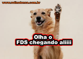 FDS!!!!